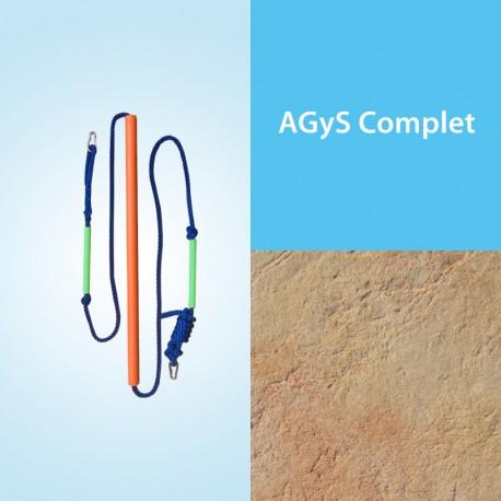 AGyS Integral